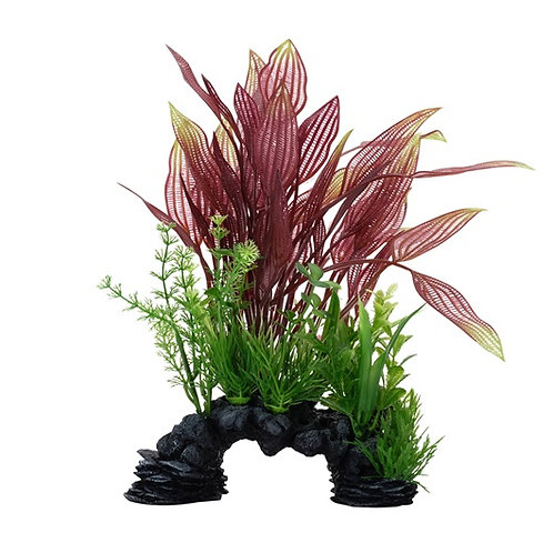 Plante-dentelle-rouge-Deco-Scapes-Aqualife-poisson-Animal-Expert-St-Bruno