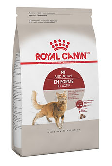 Adulte en Forme et Actif Royal Canin