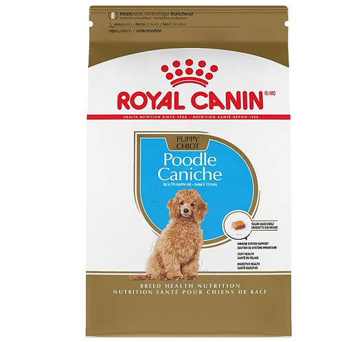Caniche Chiot Royal Canin Animal Expert St-Bruno