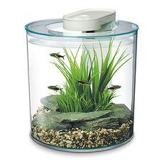 Aquarium 360° équipé Marina