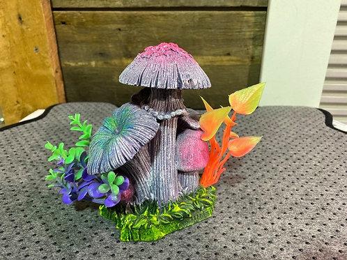 Champignons-colores-decor-aquarium-Animal-Expert-St-Bruno