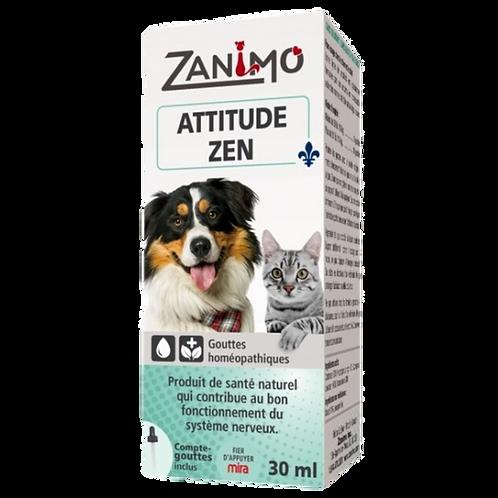 Attitude zen chien chat Zanimo Animal Expert St-Bruno