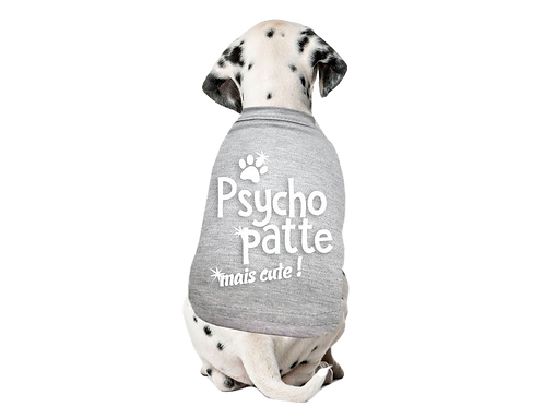 Chien fou Psycho pattes Animal Expert St-Bruno