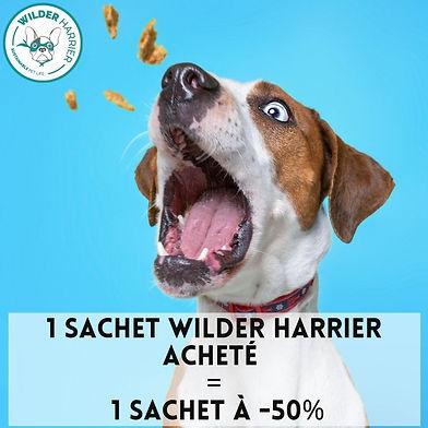 Promo Wilder Harrier