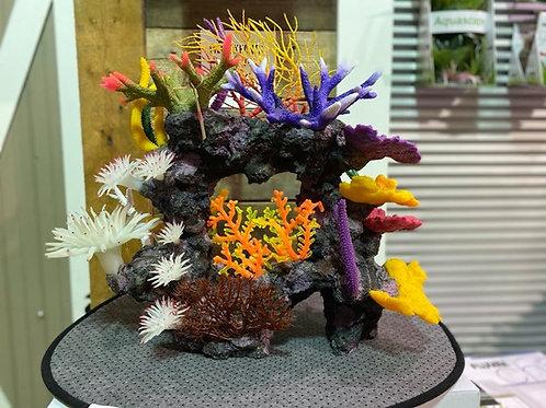 Recif-coraux-plantes-aquarium-poisson-Animal-Expert-St-Bruno