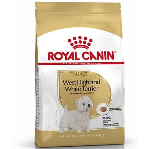 West Highland Whit Terrier Adulte Royal Canin chien Animal Expert St-Bruno.jpg