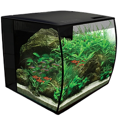 Aquarium Flex freshwater kit à LED de Fluval