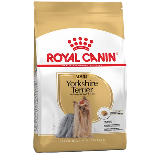 Yorkshire Terrier Adulte Royal Canin chien Animal Expert St-Bruno