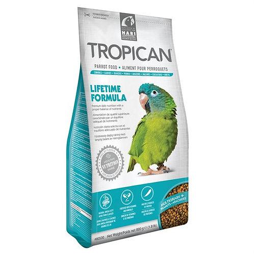 Aliment Lifetime Tropican pour perroquets