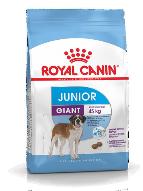 Giant Junior Royal Canin Animal Expert St-Bruno