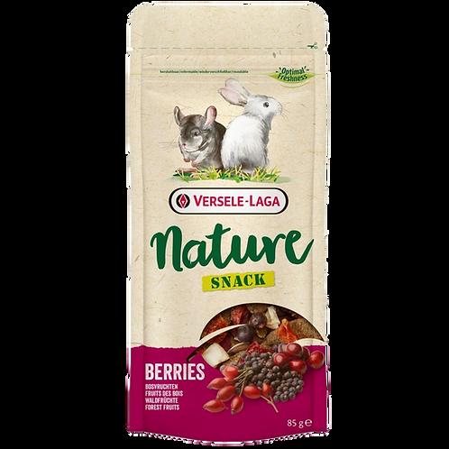 Nature snack aux fruits des bois Versele Laga pour rongeurs Animal Expert St-Bruno