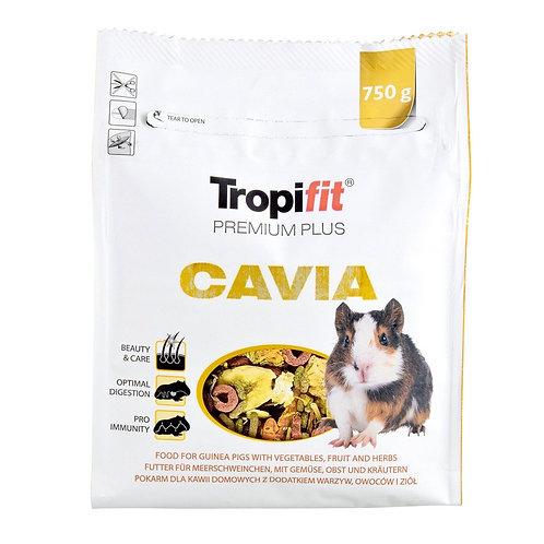 Nourriture Tropifit Cavia pour cochon d'inde