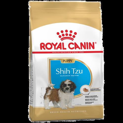 Shih Tzu Chiot Royal Canin chien Animal Expert St-Bruno