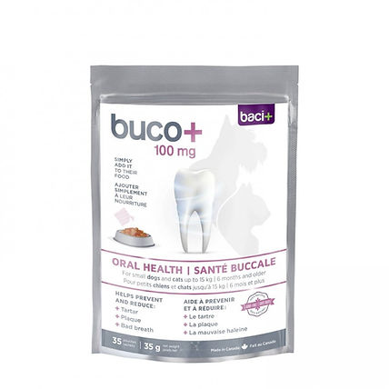 Buco + santé buccale