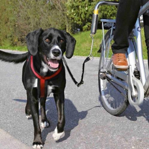 Biker-set-Trixie-chien-Animal-Expert-St-Bruno