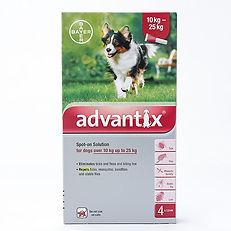 Protection contre puces et tiques Bayer Advantix II pour grand chien