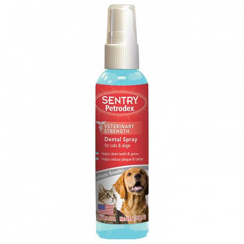 Rince-bouche Petrodex Sentry pour chien Animal Expert St-Bruno