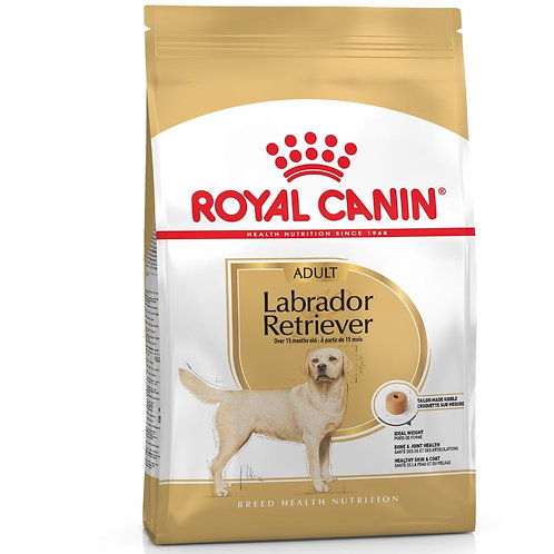 LABRADOR RETRIEVER adulte Royal Canin chien Animal Expert St-Bruno