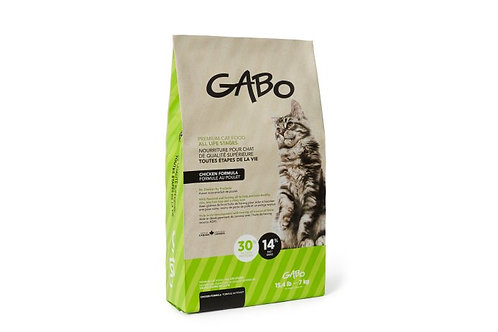 GABO Chat-Chaton