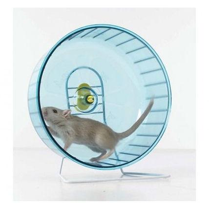 Rolly Giant Exercise Wheel