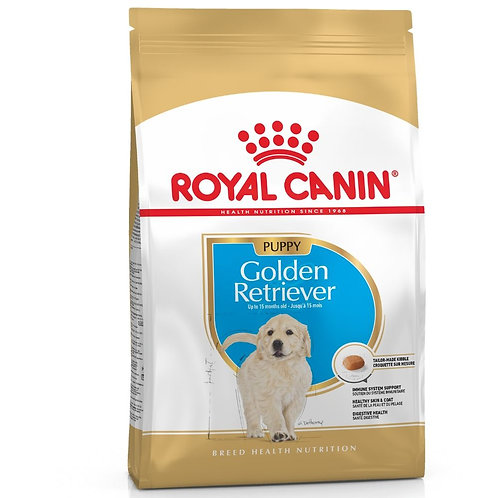 GOLDEN RETRIEVER chiot Royal Canin chien Animal Expert St-Bruno