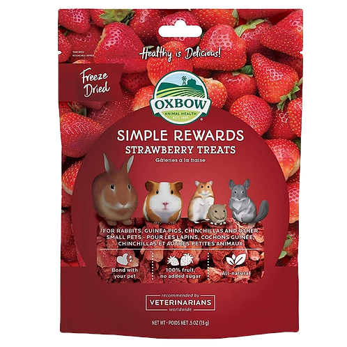 Gateries a la fraise Simple Rewards Oxbow pour rongeurs Animal Expert St-Bruno