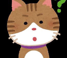 猫にカラスにタコにひょっとこ??