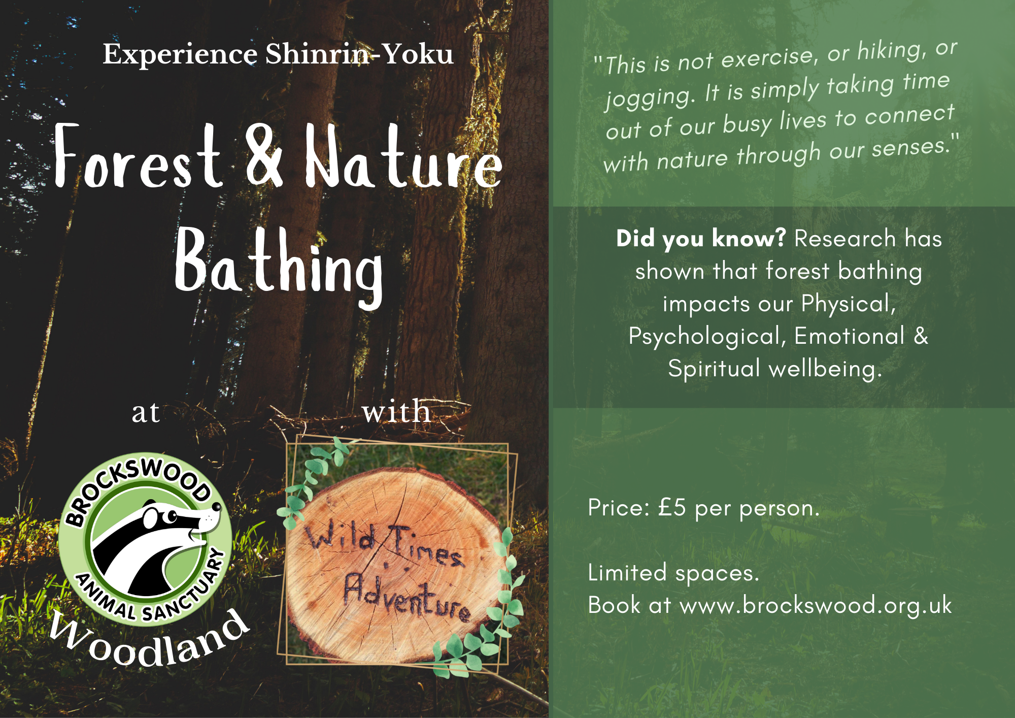 Forest & Nature Bathing