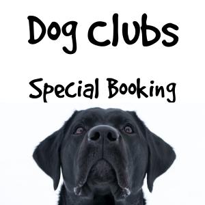 Club Booking