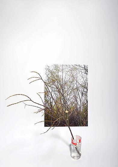 Lukas Loske, Akademie der Bildenden Künste München, Fotografie, Fotoklasse, Dieter Rehm, Kunst, Adbk, Jahresausstellung, Fotokunst, Künstlerportraits,