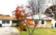 NIMITZ_edited.jpg