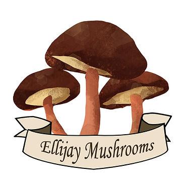 ellijay mushroom_edited.jpg