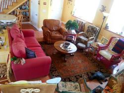 Laughing-Lizard-Sitting-Room