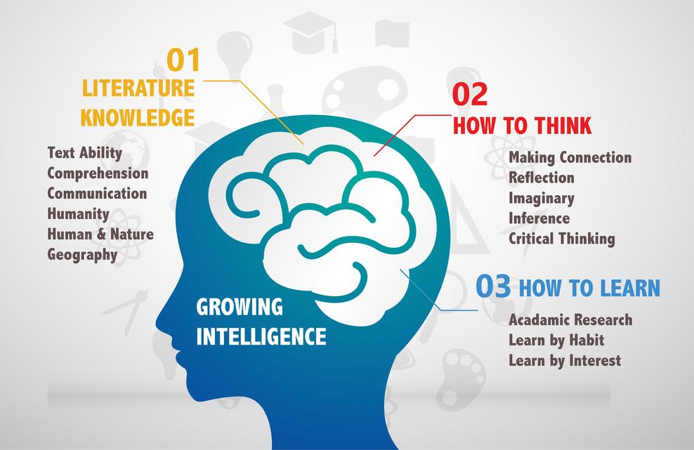 education info17-01.jpg