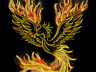 Stress and Reaction : The Phoenix