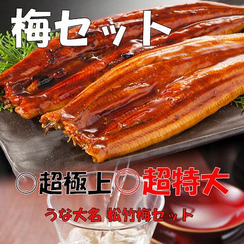 【梅セット】 豪華ギフト うなぎの蒲焼 特大サイズ×2尾  (約220g×2尾)タレ付き
