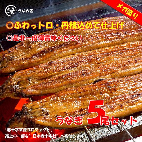 【メガ盛り 梅セット】本気の蒲焼き レギュラー5尾  (約220g×5尾)