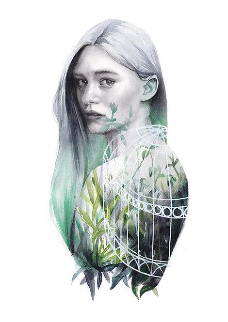 Invernadero verde