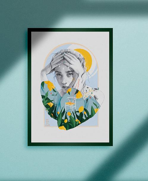 Limones // Lemons