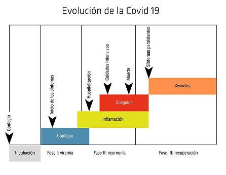 Gráfico Covid 19.jpg