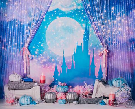 Disney Princess' Dream