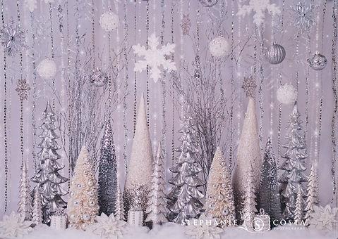 Silver Season Sparkle