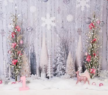 Winter Onederland Pink (1 of 1).jpg