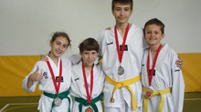 Karlovac Open 2015