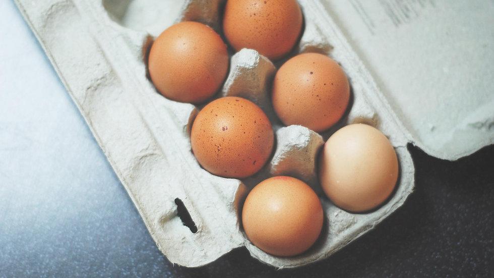 1 Dozen Organic Eggs