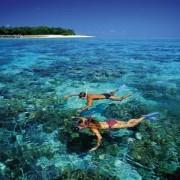 Mergulho no mar claro de Maragogi