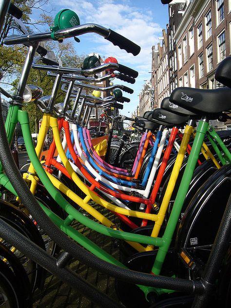Aluguel e Passeio de Bike