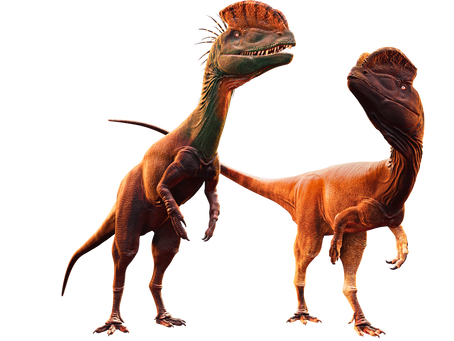 Thanksgiving 2020 Update: New Dinosaur Models, New Logo, etc.