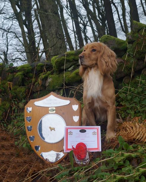 Luke winning his first field trial