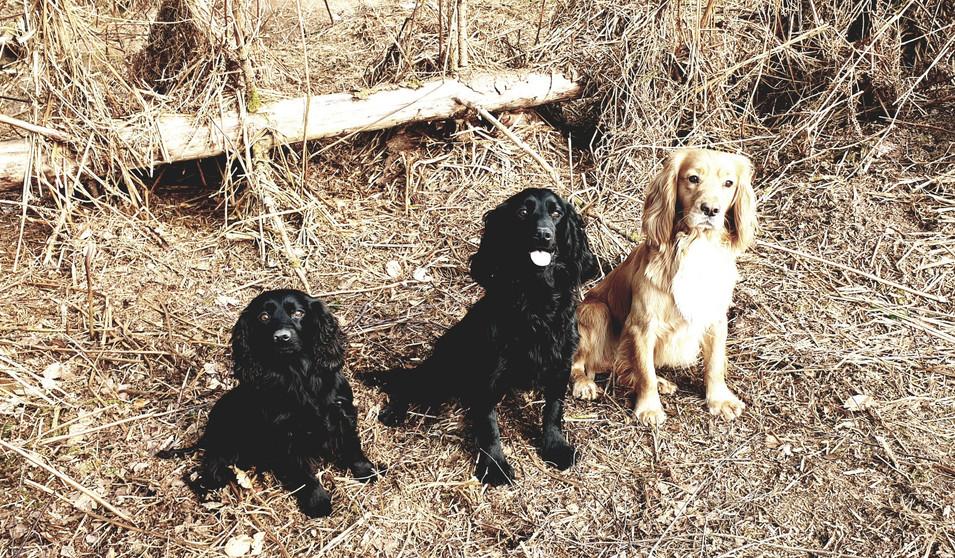 Lizzie, Wilson & Luke aka mum, son & dad